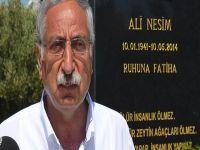 Girne Belediyesi'nden Ali Nesim'e anlamlı anma