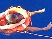 Pasifik Okyanusu'nda 14 saat boyunca 'deniz çöpü'ne tutunarak hayatta kaldı