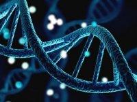Sağlıklı ve uzun yaşamın sırrı epigenetikte mi yatıyor?
