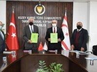 Girne Belediyesi'nden Rekreasyon Alanı Projesi