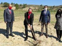ODTÜ Kuzey Kıbrıs'ta üretilen 900 adet zeytin fidanı kampüs arazisine dikildi