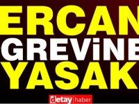 Bakanlar Kurulu'ndan Ercan grevine yasak