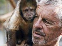 Bilim insanları üç hafta yaşayan insan-maymun embriyosu üretti