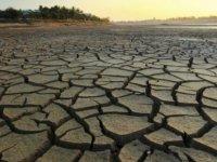 BM: Kuraklık Gizli Bir Küresel Kriz