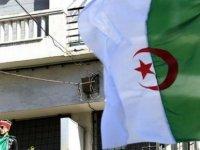 """Cezayir'de Yolsuzluk Soruşturmalarında """"850 Milyon Dolar Değerinde Mal Varlığına"""" El Konuldu"""