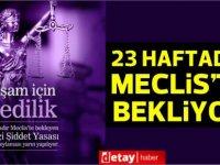 'Ev İçi Şiddet Yasası' 23 haftadır Meclis'te ivedilik oylaması için bekliyor!