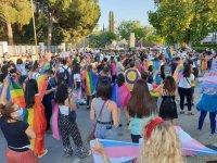 """Uluslararası Homofobi BİFOBİ Transfobi Karşıtlığı Gün kapsamında bir araya gelinerek, """"Gökkuşağı Zinciri"""" oluşturuldu"""