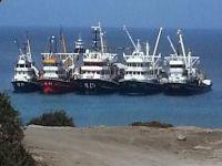 Gırgır tekneleri Karpaz'da