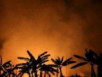 Brezilya'da Amazonlarda elektrik direği düştü: 6 ölü