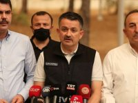 Türkiye Tarım ve Orman Bakanı Pakdemirli: Yangınların 57'sini kontrol altına aldık