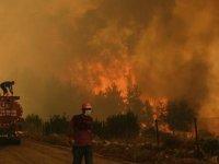 İklim değişikliği: Bu yaza damga vuran orman yangıları, sıcak hava dalgaları ve sel felaketleri