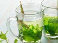 Kuru Nane Çayı Faydaları Nelerdir?