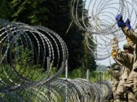 Litvanya'dan düzensiz göçmenlere karşı sınıra telden duvar örecek