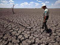 Son 4 yıl sıcaklık rekoru kırdı