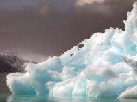 İklim krizi: Kuzey Kutbu'nda sıcaklıklar en yüksek seviyeye ulaştı