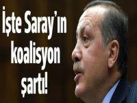 İşte Saray'ın koalisyon şartı!
