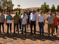 Cumhuriyet Parkı'na Girne Belediyesi tarafından zeytin fidanı dikildi