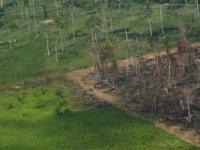 Araştırma: İklim krizinde insan etkisi neredeyse yüzde 100