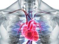 Damar Sağlığını Korumak İçin 5 Öneriye Dikkat !