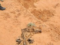 Terhune'de bir toplu mezar daha bulundu