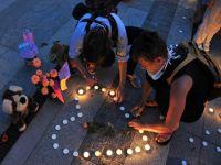 ''Berina'' bebek hayatını kaybetti