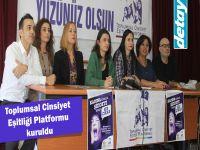 Toplumsal Cinsiyet Eşitliği Platformu kuruldu
