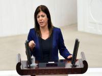 HDP'den AİHM'e sokağa çıkma yasağı başvurusu