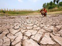 Çin'de kuraklık 27 milyon kişiyi etkiledi