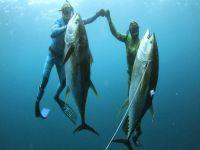 Zıpkınla Balık Avlarken yakalandılar