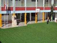 Yakın Doğu Üniversitesi Yeşil Kampüs Projesi hayata geçiyor…