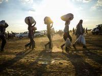 Dikelya'daki siyasi mülteciler yaşamlarına kıyma raddesinde