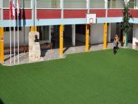 Yakın Doğu Üniversitesi Yeşil Kampüs Projesi Seminerlerle başladı