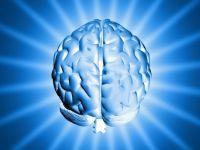 Beyin ölüm anında aşırı derecede uyarılıyor
