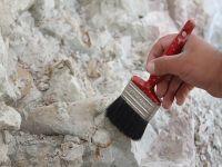 Çankırı'da antilop fosili bulundu