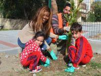 Minikler, Girne Kız İzci Parkı'na zakkum dikti