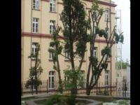 Türkiye'deki Alman okulları bugün de kapalı!