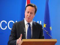 Cameron istediği desteği alamadı