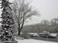 """Bulgaristan'da kar yüzünden """"sarı alarm"""""""