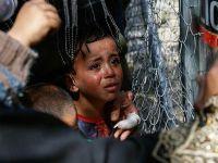 """""""Mülteci Sorunu"""" gündemi belirlemeye devam etti"""