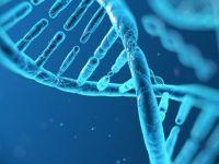 Microsoft DNA'da veri depolamak istiyor!