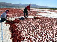 Ege'nin kurutulmuş domatesine Elazığ'dan rakip