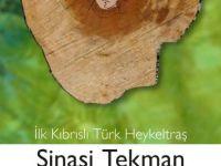 Şinasi Tekman heykel sergisi açılışı ve kitap tanıtımı cuma günü