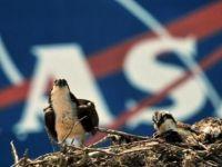 NASA, astronotların rutin bir gününü Snapchat'ten paylaştı