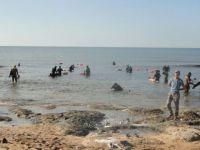 Onur Kandili Zıpkınla Balık Avlama Anı Yarışması yapıldı