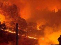 Güney Kıbrıs'taki Yangınlar Düşündürücü