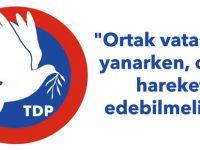 """TDP: """"Ortak vatanımız yanarken, ortak hareket edebilmeliyiz"""""""