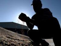 'Küresel ısınma tahıl üretimini tehdit ediyor'