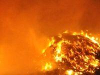 Alassa köyünde büyük yangın