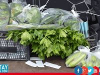 Tarım Dairesi, gıda denetim sonuçlarını açıkladı!