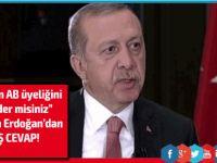 Erdoğan El Cezire canlı yayınına katıldı, bombayı patlattı!